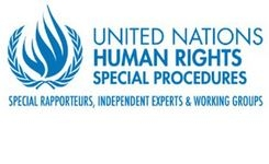 A Rights-Based Approach to Social Protection in the Post-COVID-19 Economic Recovery - UN Special Rapporteur Poverty