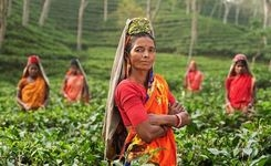Empowering Women Can Be Key to Development