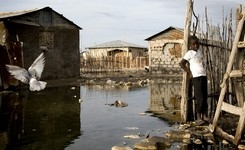 Homelessness & Inadequate Housing Violate the Right to Life - Gender - UN Special Rapporteur Housing