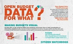 Open Budget Data for What?