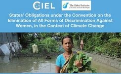 States' Obligations under the CEDAW Convention, in the Context of Climate Change