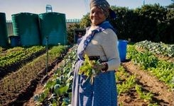 Women, Food, Land: Exploring Rule of Law Linkages: Using Law to Strengthen Food Security & Land Rights for Women