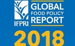 2018 Global Food Policy Report