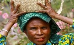 CEDAW General Recommendation on Rural Women – FIAN Analysis: Rural Women, Food & Nutrition