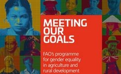 FAO Programme for Gender Equality in Agriculture and Rural Development