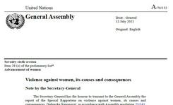 Femicide Watch: Taking Stock - UN SR Violence Against Women Report