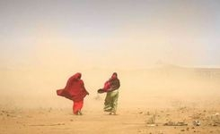 Gender Inequity & Discrimination in Drylands Agriculture