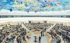 General Assembly Elects 14 Member States to the UN Human Rights Council