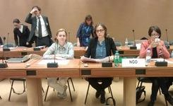 58ма сесија на Комитетот за економски, социјални и културни права при ОН во Женева