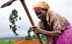 Guide Aims to Help Donors Promote Climate & Disaster Funds to WOMEN