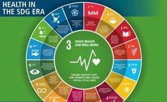 Infographic: Sustainable Development Goals (SDGs)