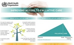 Infographic Improving Access in Palliative Care