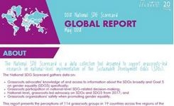 SDG Scorecard Global Report - Grassroots Women's Rights Organizations - 19 Countries, 5 Regions