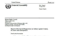 Special Rapporteur on Violence Against Women Report to the UN Human Rights Council 2016