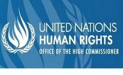 UN Social Forum Report - Gender