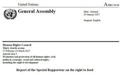 UN Special Rapporteur on Food Report 2017 - Pesticides in Agriculture - Impact on Food Safety, Human Health, Environment - Food Security