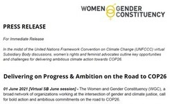 Women's Rights Advocates Outline Opportunities & Challenges for Climate Action Towards COP26