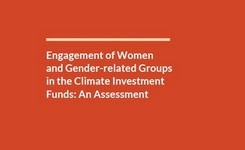 Engagement of Women & Gender-Related Groups in the Climate Investment Funds: Assessment