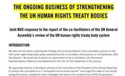Иницијатива за зајакнување на телата за човекови права на ООН