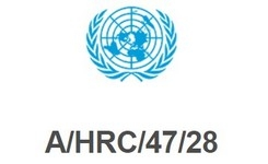 UN Special Rapporteur on the Right to Physical and Mental health