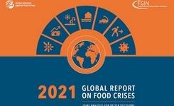 2021 Global Report on Food Crises - Women & Children - Nutrition +